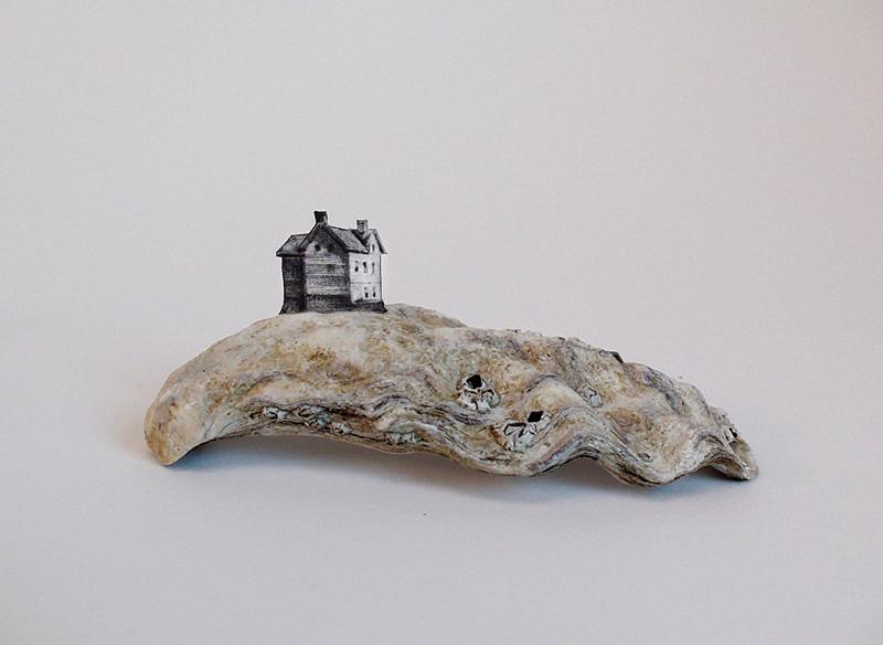 shellter-house